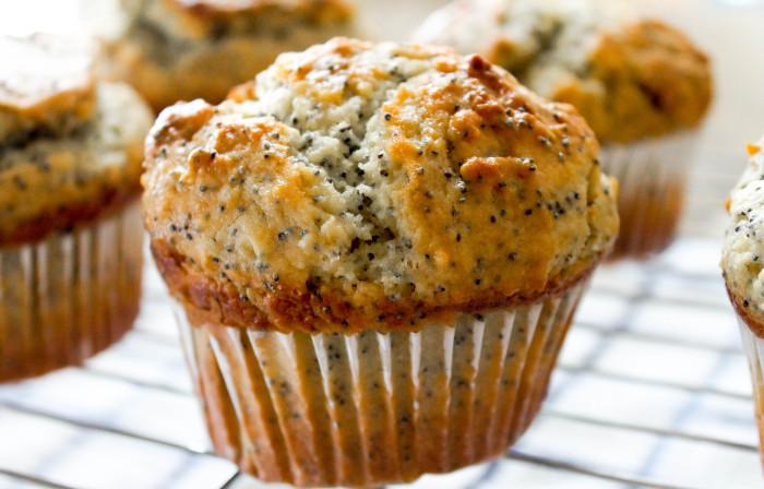 Orange Lemon Poppyseed Muffins – The Salted Cookie