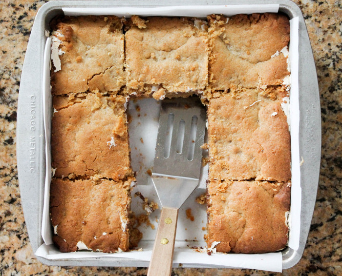 Peanut Butter S'mores Bars - The perfect way to enjoy S'mores all year round!