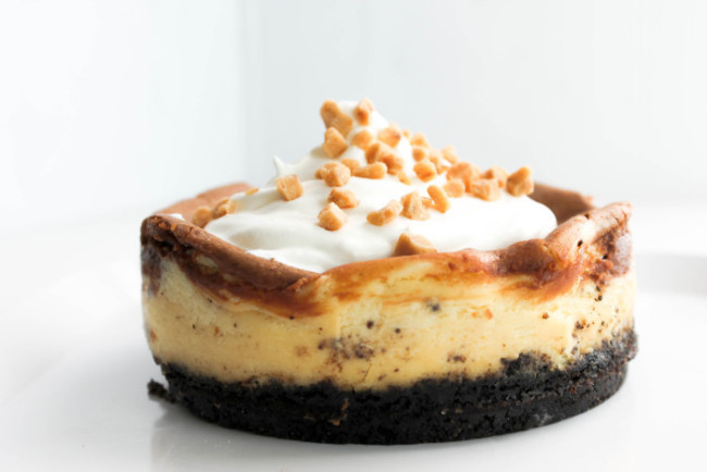 The_Salted_Cookie_Mini_Nutella_Cheesecake