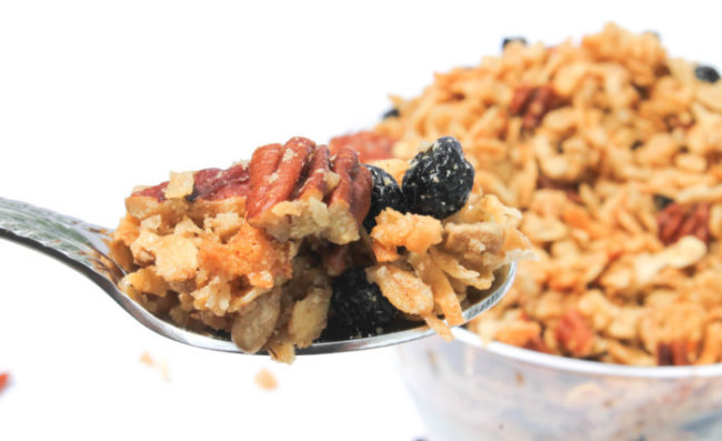 Blueberry Pecan Granola – The Salted Cookie
